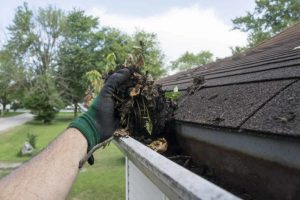 gutter cleaning by handyman