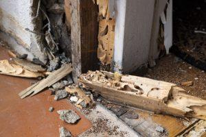 termite damage on front door of home